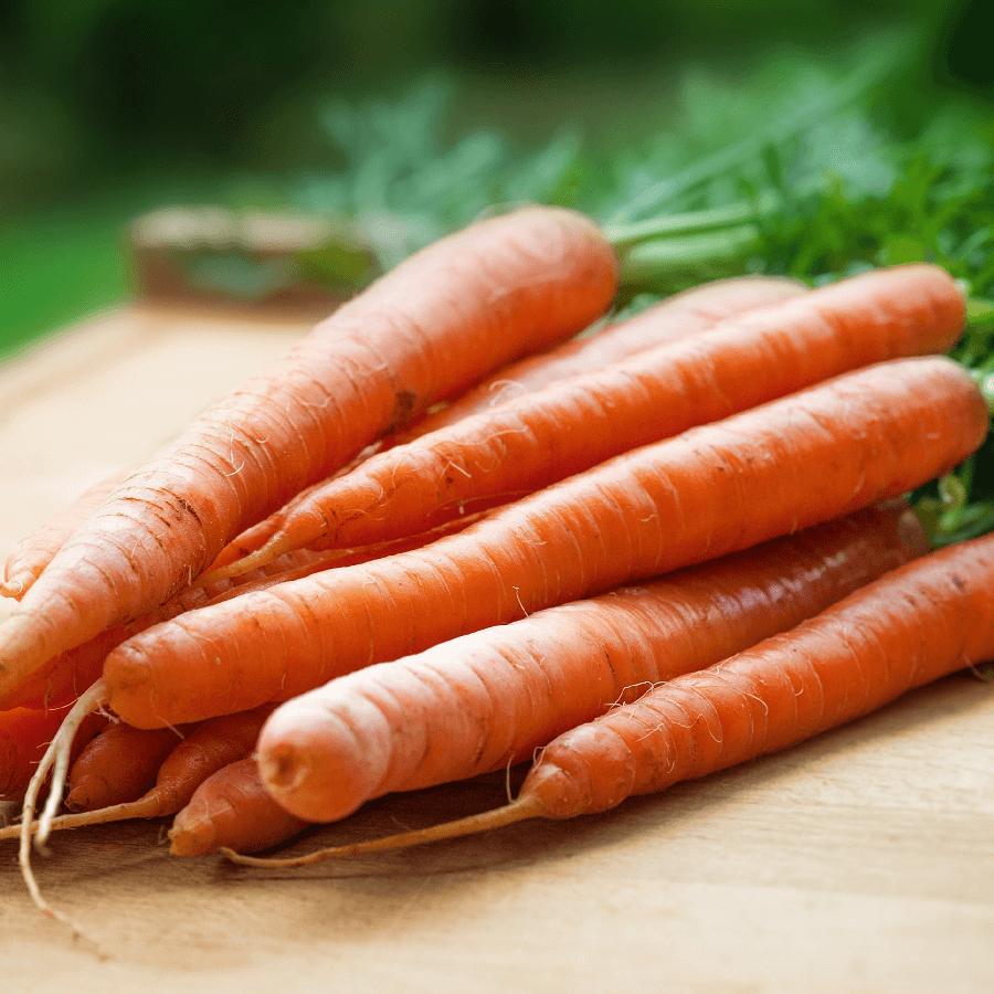 Ilgavaisė morka
